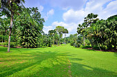 Beauty and peaceful tropical garden at sunny day.