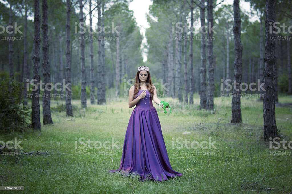 Beauty princess with frog in forest stock photo