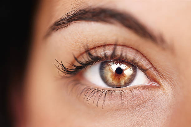 beauty shines brilliantly in her gaze - eyelid stock pictures, royalty-free photos & images