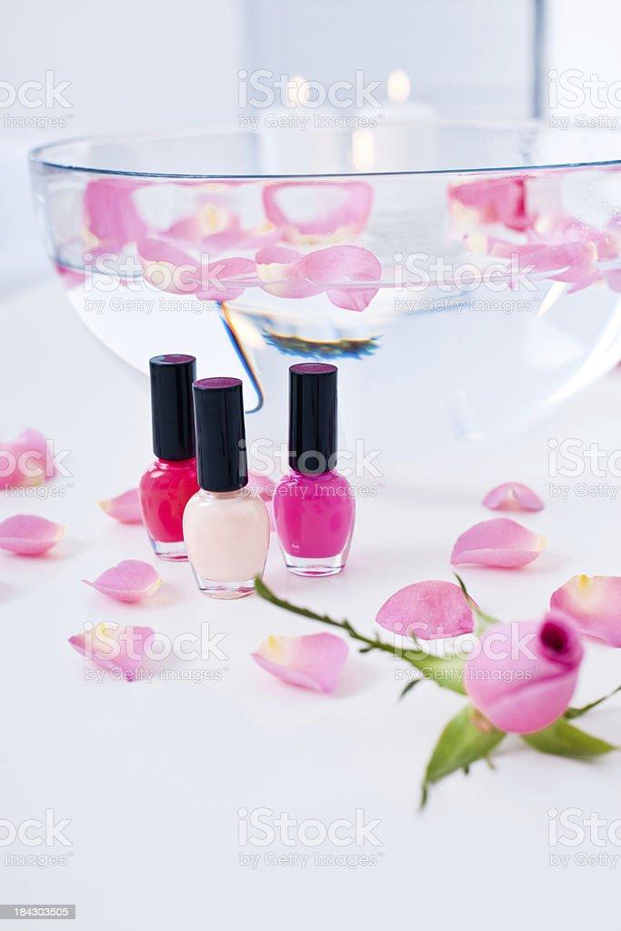 Beauty Spa für die Hände Lizenzfreies stock-foto