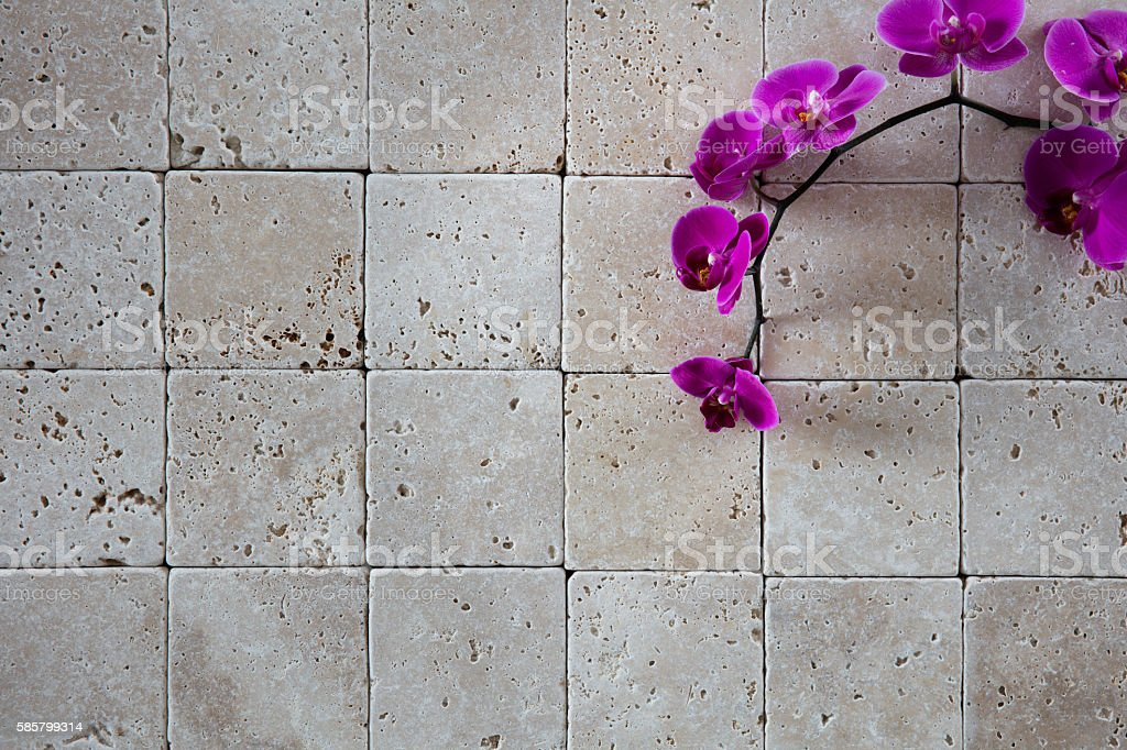 beauty spa wallpaper with fresh pink orchids for copy space stock photo