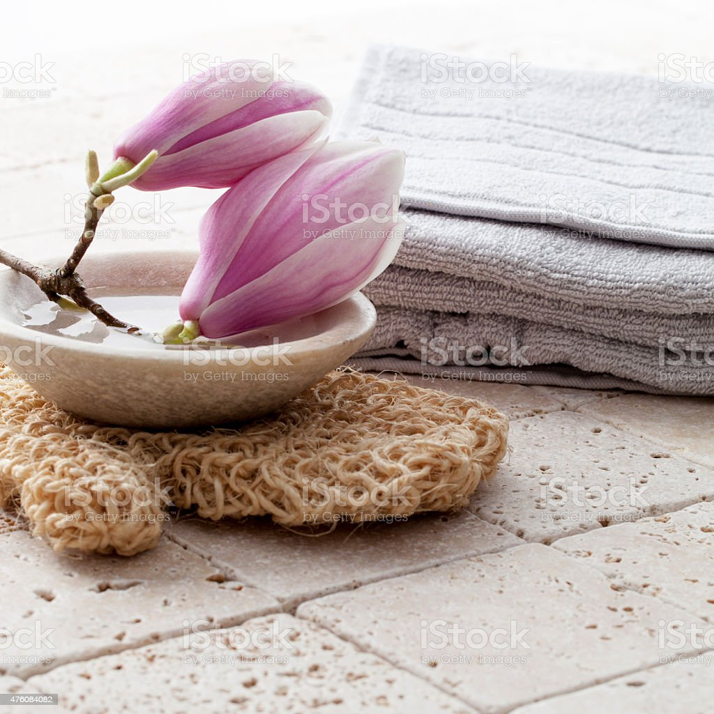 Beauty Symbols With Magnolia Flowers Stock Photo More Pictures Of