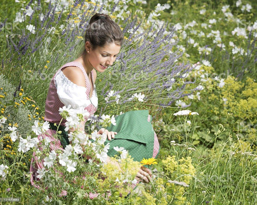 Beauty wearing Dirndl Tracht sitting in a Flower Garden (XXXL) stock photo