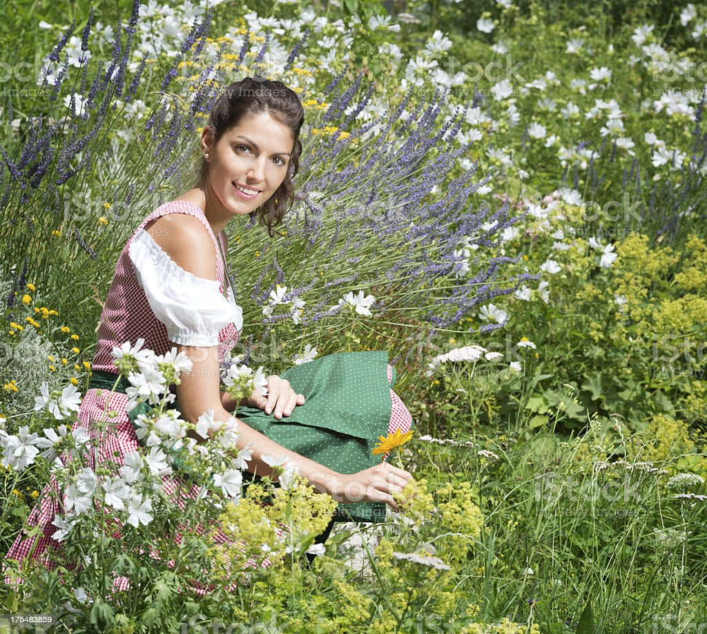 Beauty wearing Dirndl Tracht sitting in a Flower Garden (XXXL) royalty-free stock photo