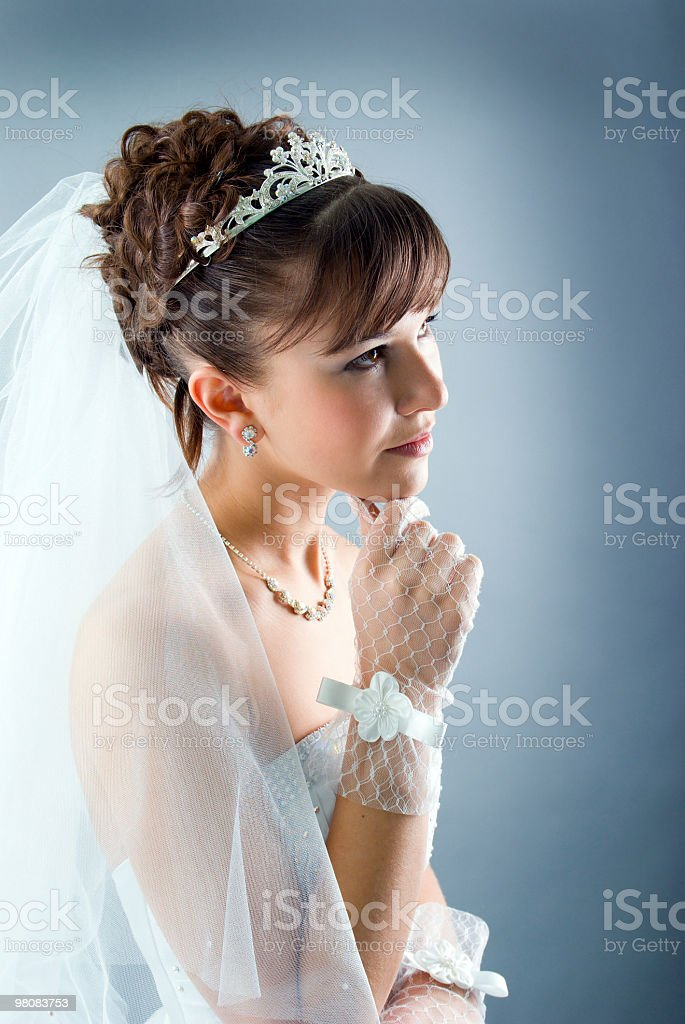 Beauty young bride dressed in  wedding dress royalty-free stock photo