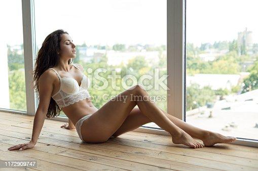 istock Beauty young woman sitting near window 1172909747