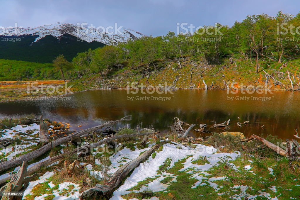 Beaver dam and snowcapped Andes landscape, Ushuaia - Tierra Del fuego, Argentina stock photo
