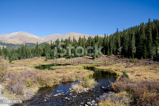 Beaver Dam Near Breckenridge, Colorado during the Autumn Season