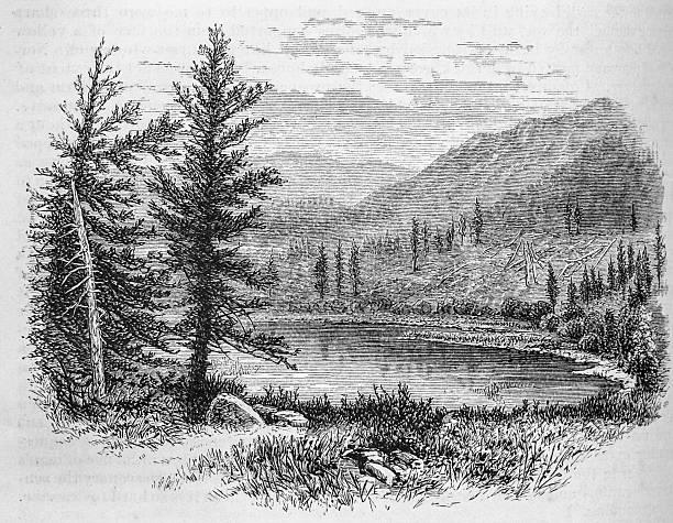 beaver lake, canyon conejos - acquaforte foto e immagini stock
