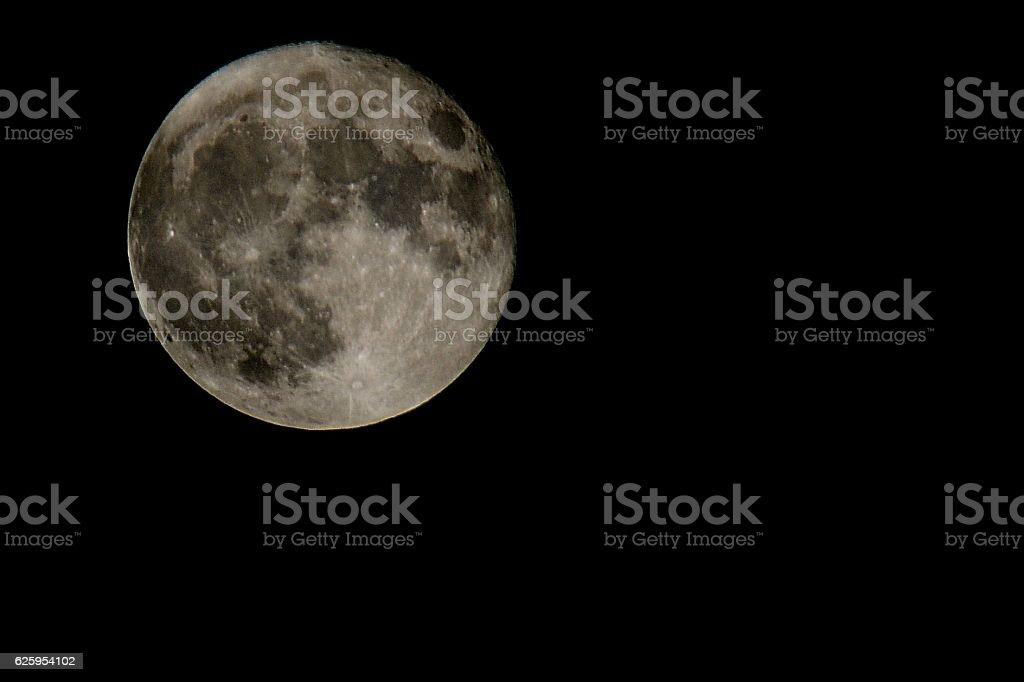 Beaver Moon stock photo