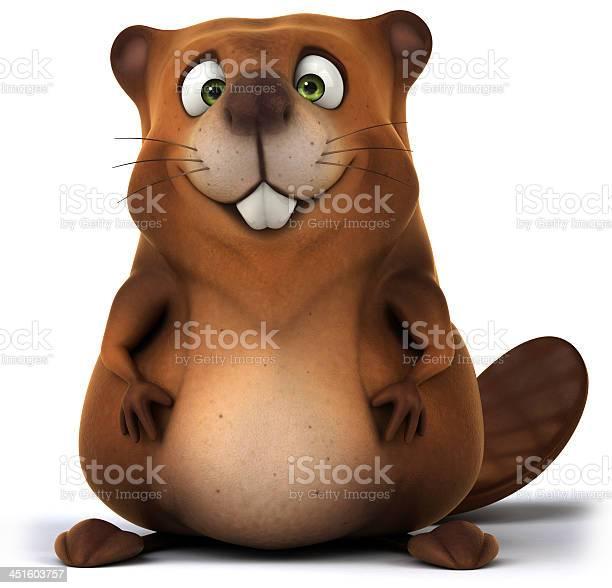 Beaver picture id451603757?b=1&k=6&m=451603757&s=612x612&h=v2n5jvsqfn llipqg8m0pykmd6pmegw7gzfy1llg0yo=