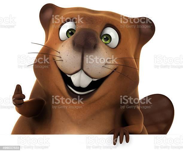Beaver picture id499002533?b=1&k=6&m=499002533&s=612x612&h=yhgtm 9iem7ahrabnibdjhh 5dvuzvimu14x9e6vqls=