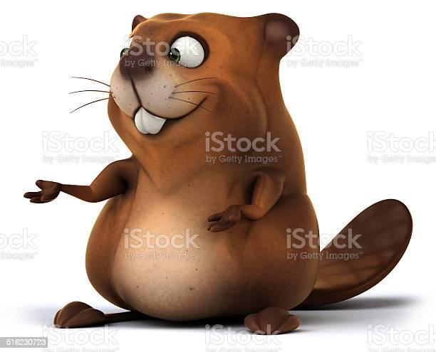 Beaver picture id516230723?b=1&k=6&m=516230723&s=612x612&h=pgbskme4hyxdpv dwlsbuvp3kvn9iqibc utygpfgpo=