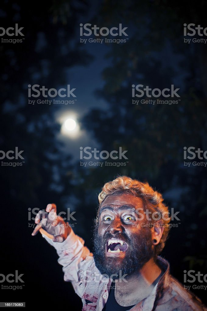 Becoming The Wolf Under A Full Moon. stock photo
