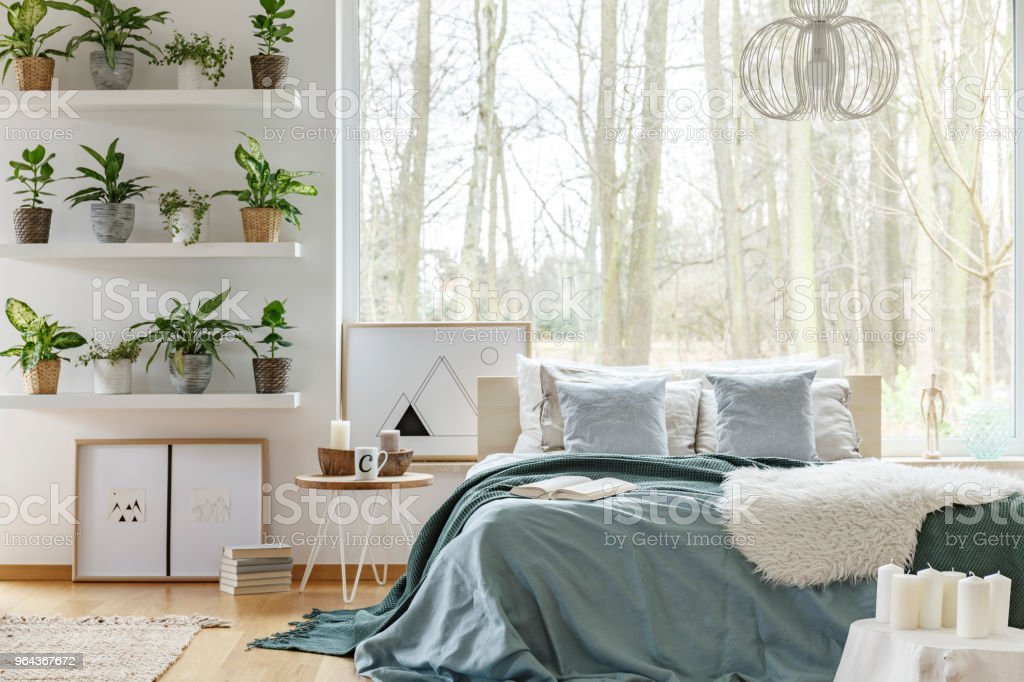 Bed en planten in slaapkamer interieur - Royalty-free Appartement Stockfoto