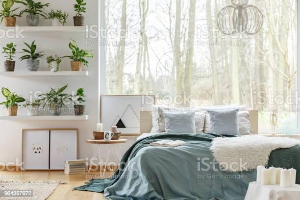 Foto de Plantas No Interior Do Quarto E Cama e mais fotos de stock de Aconchegante