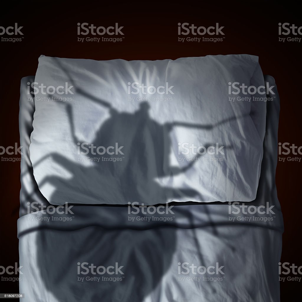 Bed Bug Fear stock photo