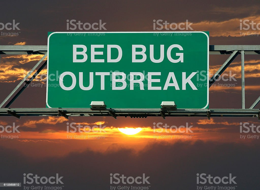 Bed Bug Outbreak stock photo