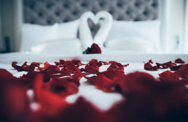 Bed covered with rose petals and towel swans in the background - Romantic stays