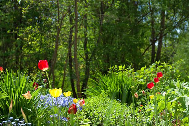 Bed in a garden with beautiful flowers picture id480843700?b=1&k=6&m=480843700&s=612x612&w=0&h=ajvavipqlaamnz021eoefiacw5mww0neqi9p5bwksmw=