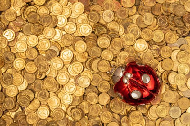 Bett aus goldenen Münzen mit glücklichen Marienkäfer auf der Oberseite – Foto