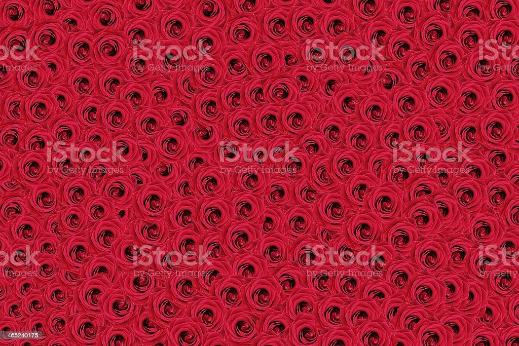 Bed Of Roses stock photo