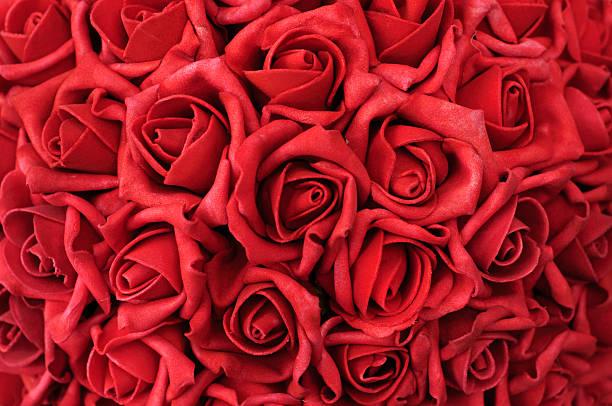 letto di petali di rose - rosa rossa foto e immagini stock