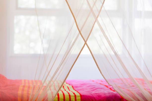 bett unter einem moskitonetz - lila, grün, schlafzimmer stock-fotos und bilder