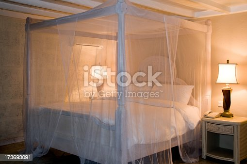 Four poster bed with mosquito net