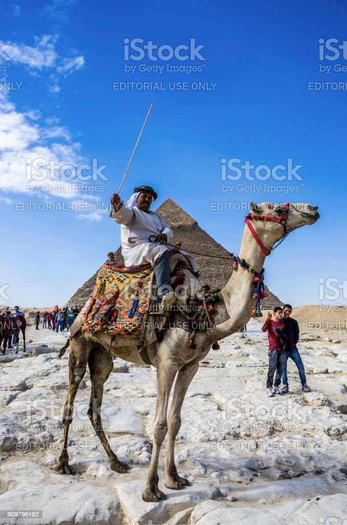 Bedouin and camel in the Pyramids of Giza. Cairo, Egypt. stock photo