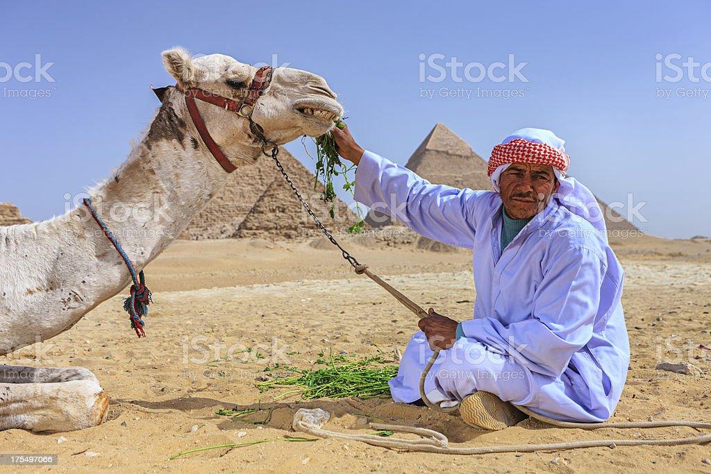Bedouin feeding his camel royalty-free stock photo