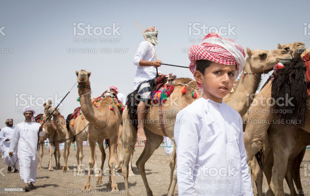 bedouin men with their arabian camels stock photo