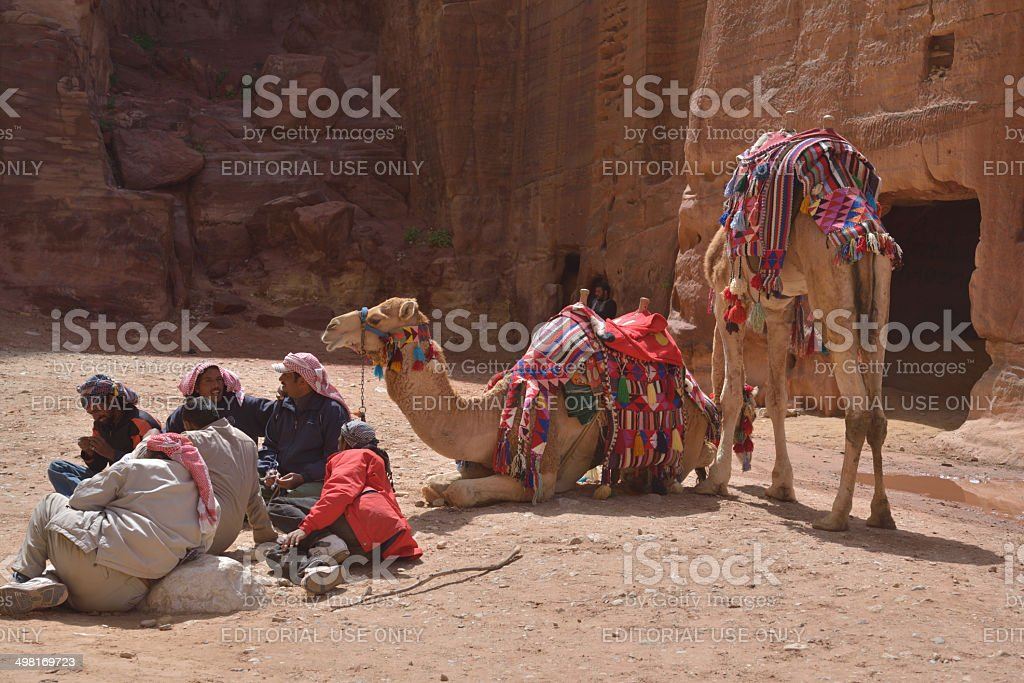 Bedouins with camels in Petra stock photo