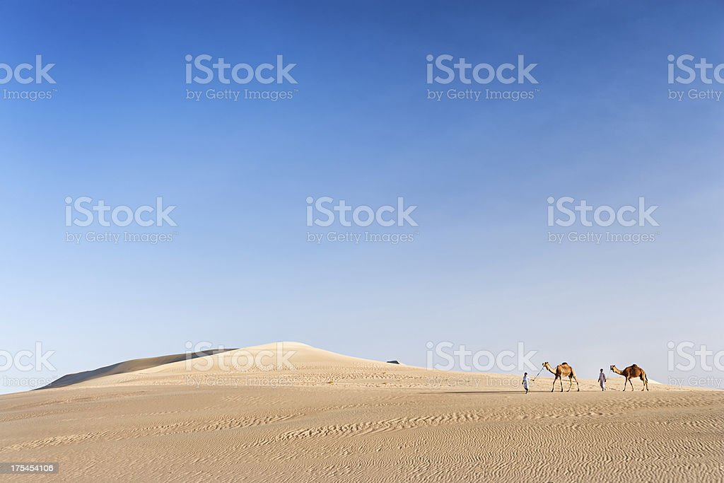 Bedouins with camels on Western Sahara Desert in Africa royalty-free stock photo