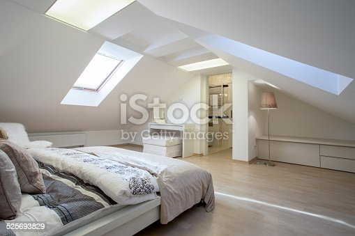 istock Bedroom connected with bathroom 525693829