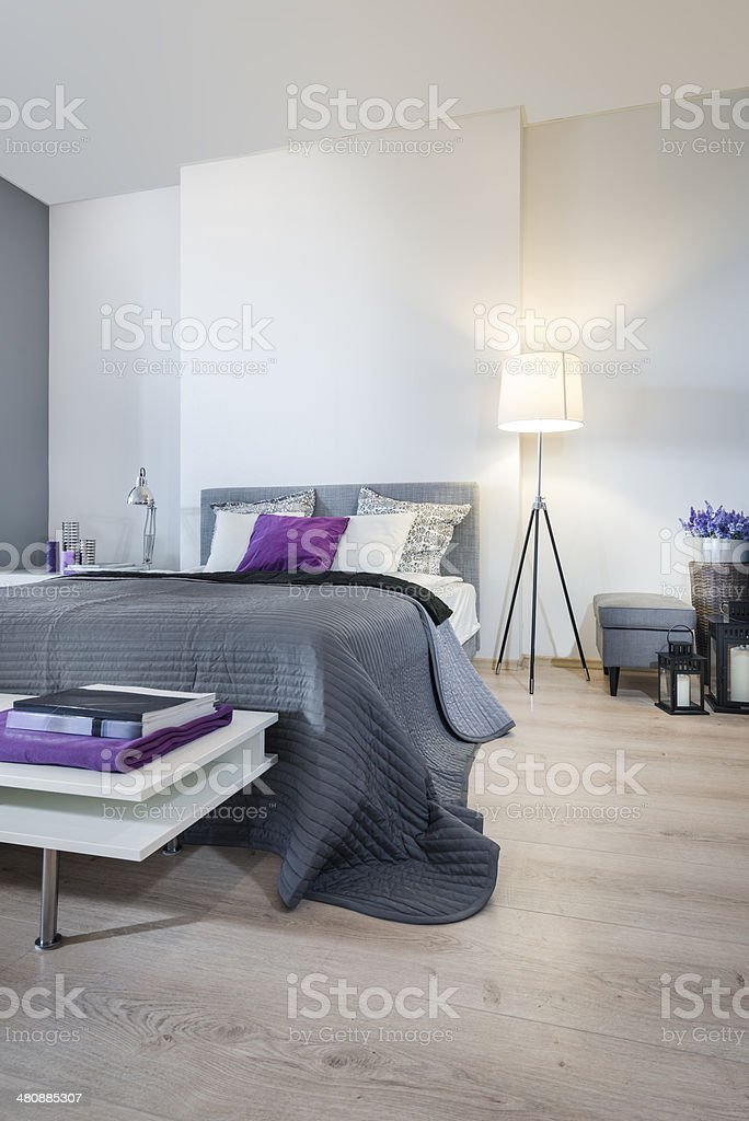 Schlafzimmer Einrichtung mit grau-Bett – Foto