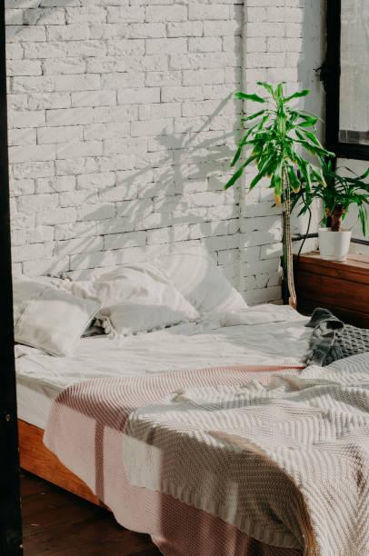 schlafzimmer dachboden innenraum. bett, grünpflanze und wand - bauernhaus bett stock-fotos und bilder