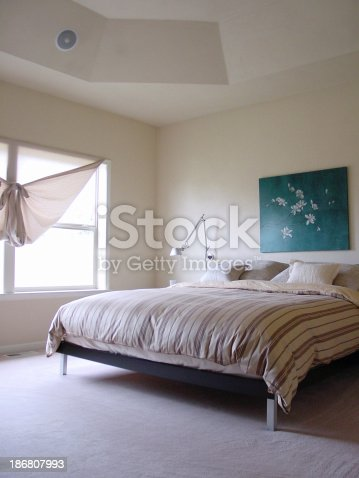 Nice master bedroom with coved ceiling!