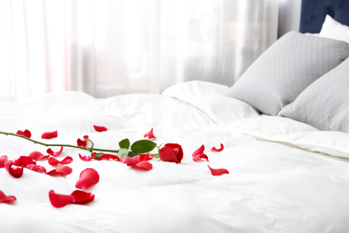 istock Bedroom with Single Rose and Petals on Bed, Copy Space 157405866