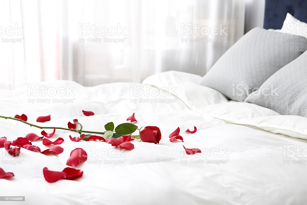 Bedroom with Single Rose and Petals on Bed, Copy Space stock photo