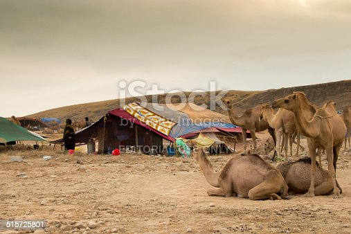 Dhofar, Oman - September 27, 2013: Bedu people are walking around their tents in the plains of Dhofar, near Salalah, in Oman. They come down from the mountains in August when the (short) monsoon period starts