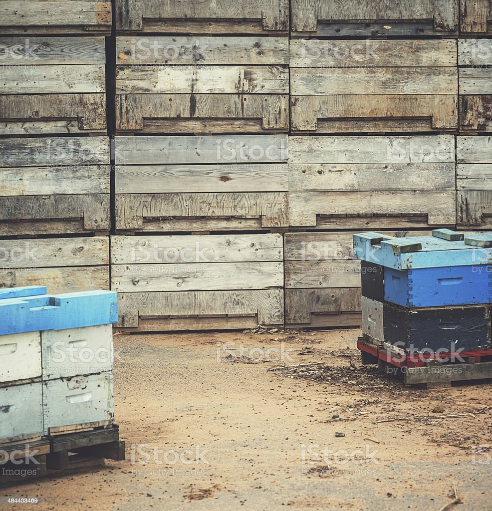 Bee Boxes in Orchard royalty-free stock photo