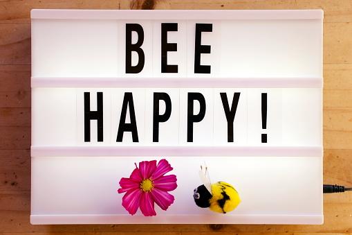Bee Happy in Light Box Trend