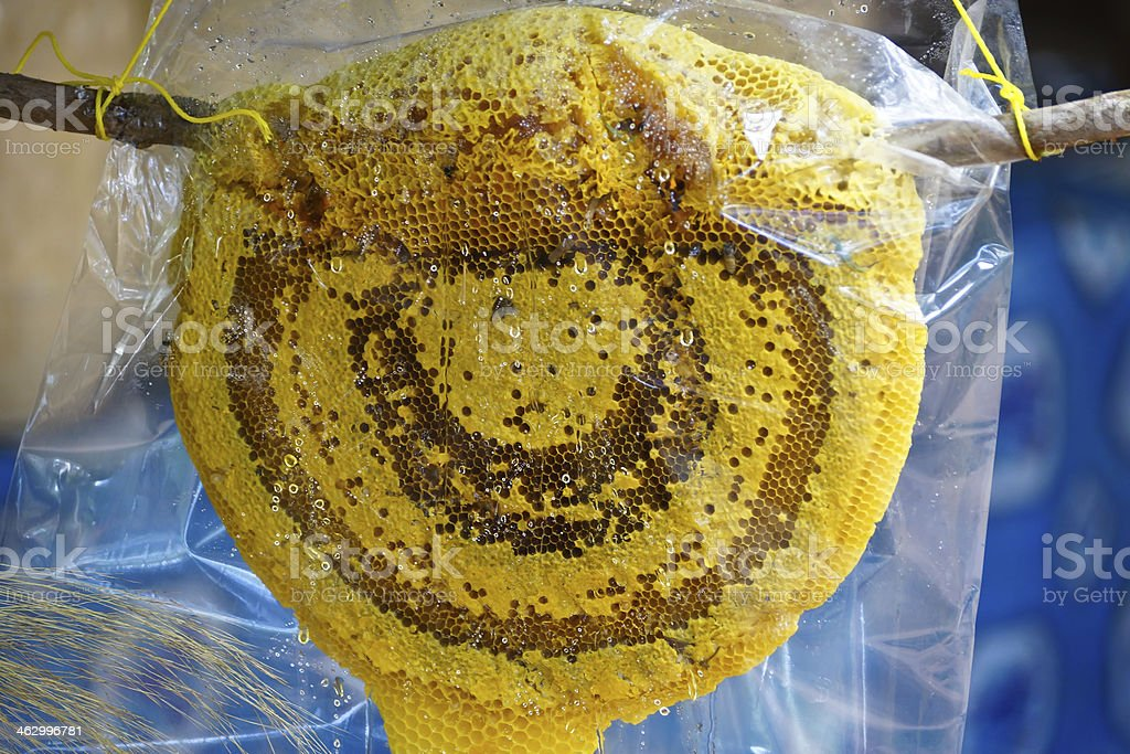 bee hive sold in a plastic bag royalty-free stock photo
