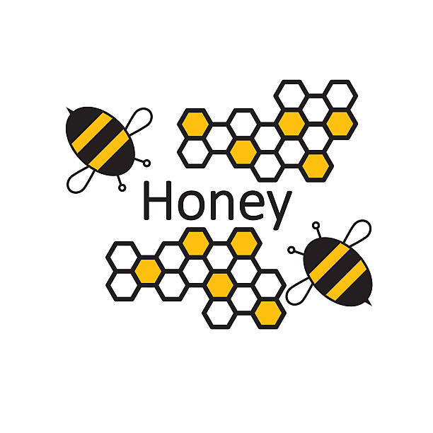Bee Honey. Banner or poster with bees and honeycombs. - Photo