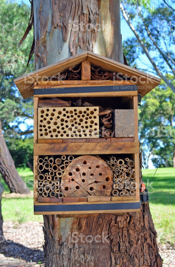 Bee hotel to attract native solitary bees stock photo