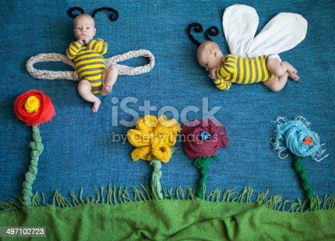 istock Bee 497102723