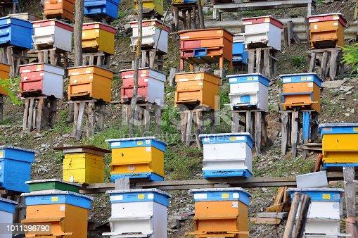 Bee yard on the hill in Bulgaria