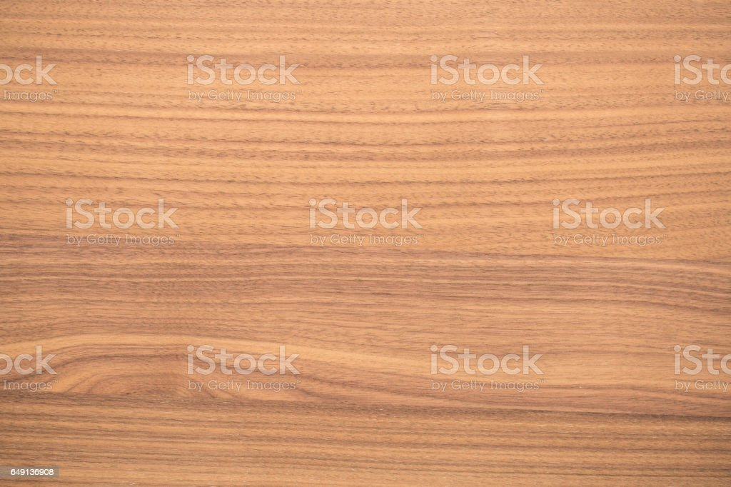 beech texture with natural pattern – Foto