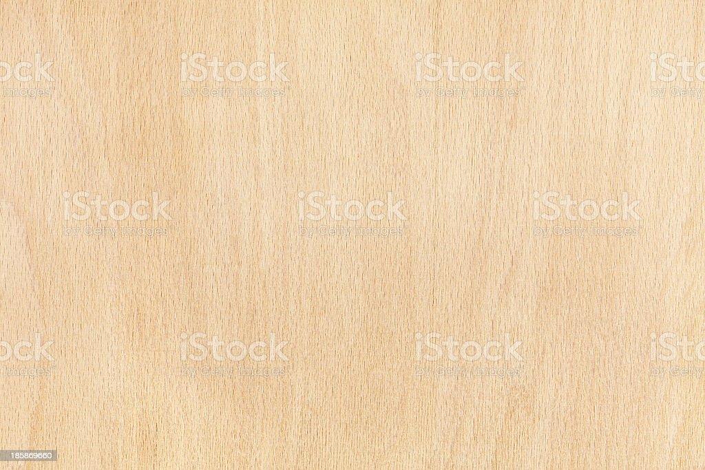 Beech wood texture stock photo